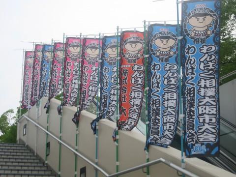 わんぱく相撲大阪市大会に来ていまぁす♪